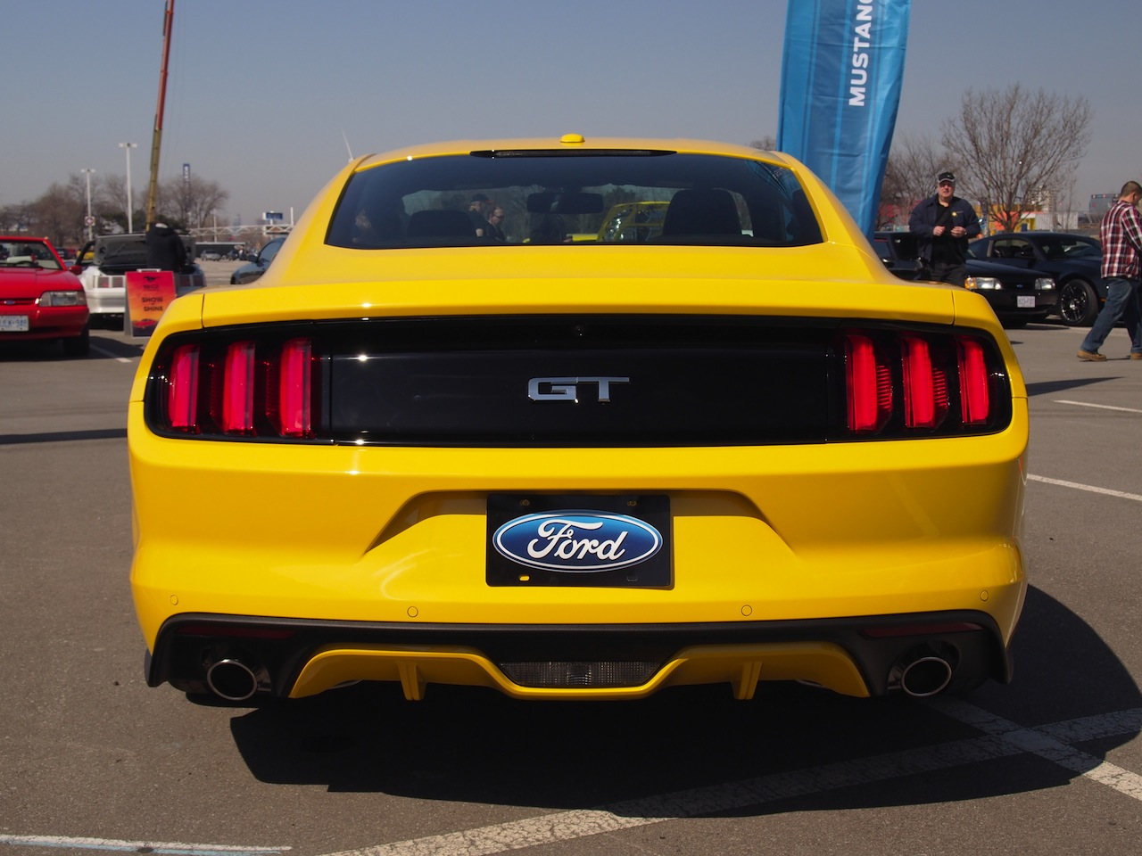 Ford Mustang 50th Anniversary Cars Photos Test Drives
