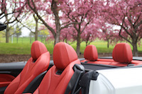 bmw 435i cabriolet seats
