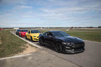 2016 Ford Shelby GT350 black yellow red paint