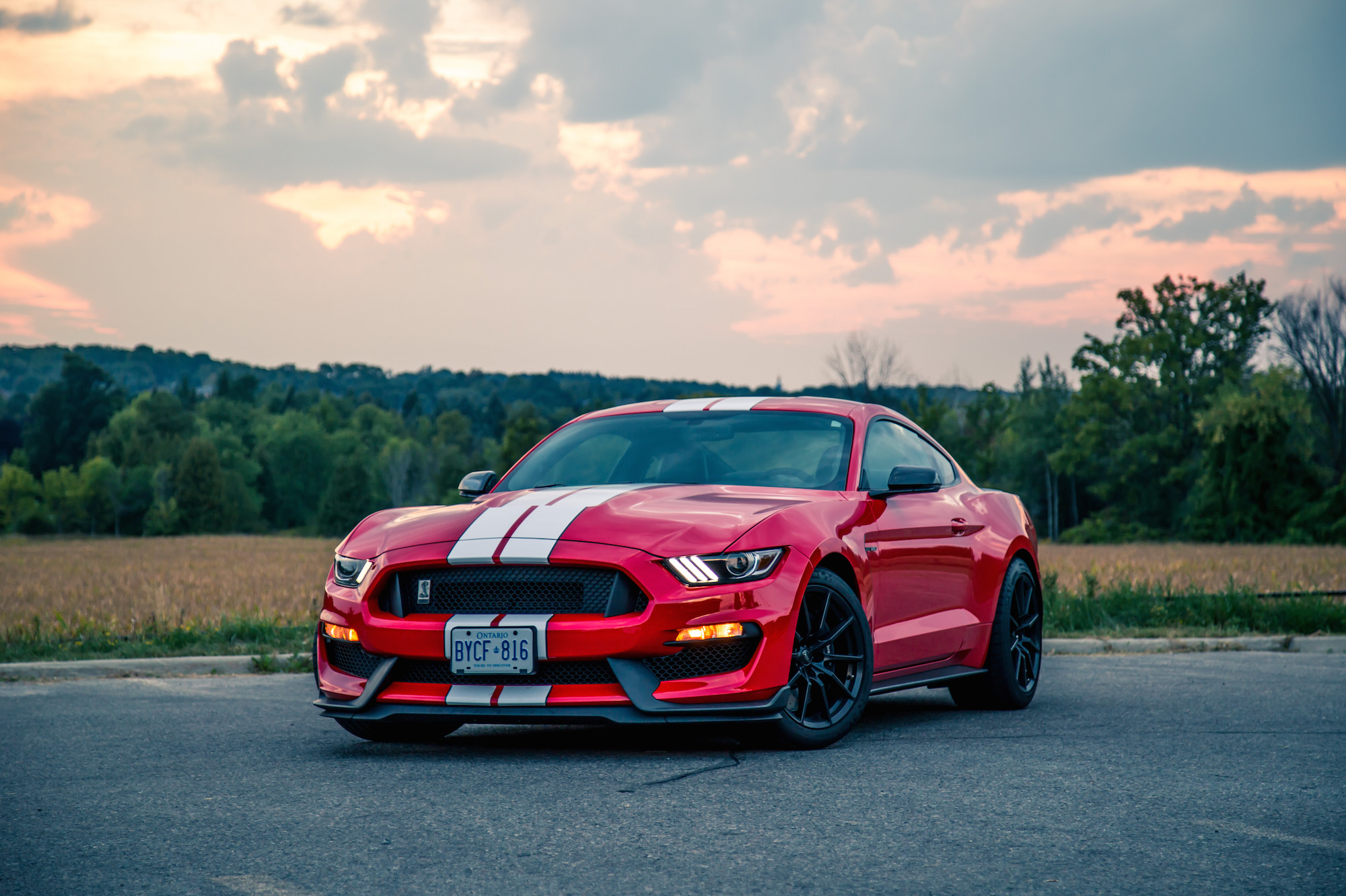Gt350r Review >> Review: 2016 Ford Shelby GT350 | Canadian Auto Review