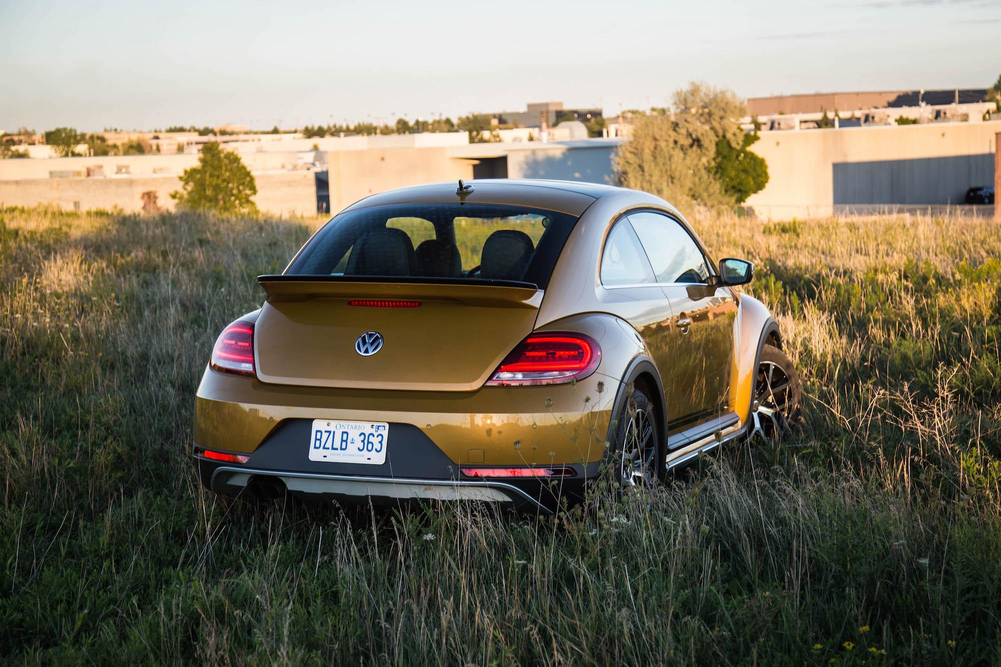 bugs volkswagen
