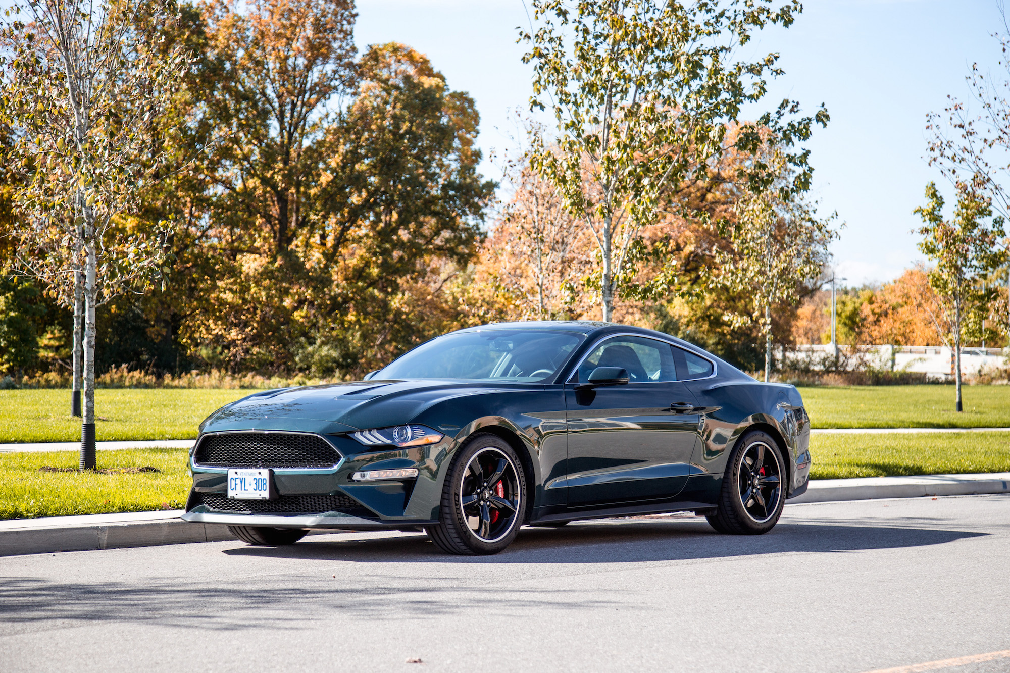 review 2019 ford mustang bullitt car. Black Bedroom Furniture Sets. Home Design Ideas