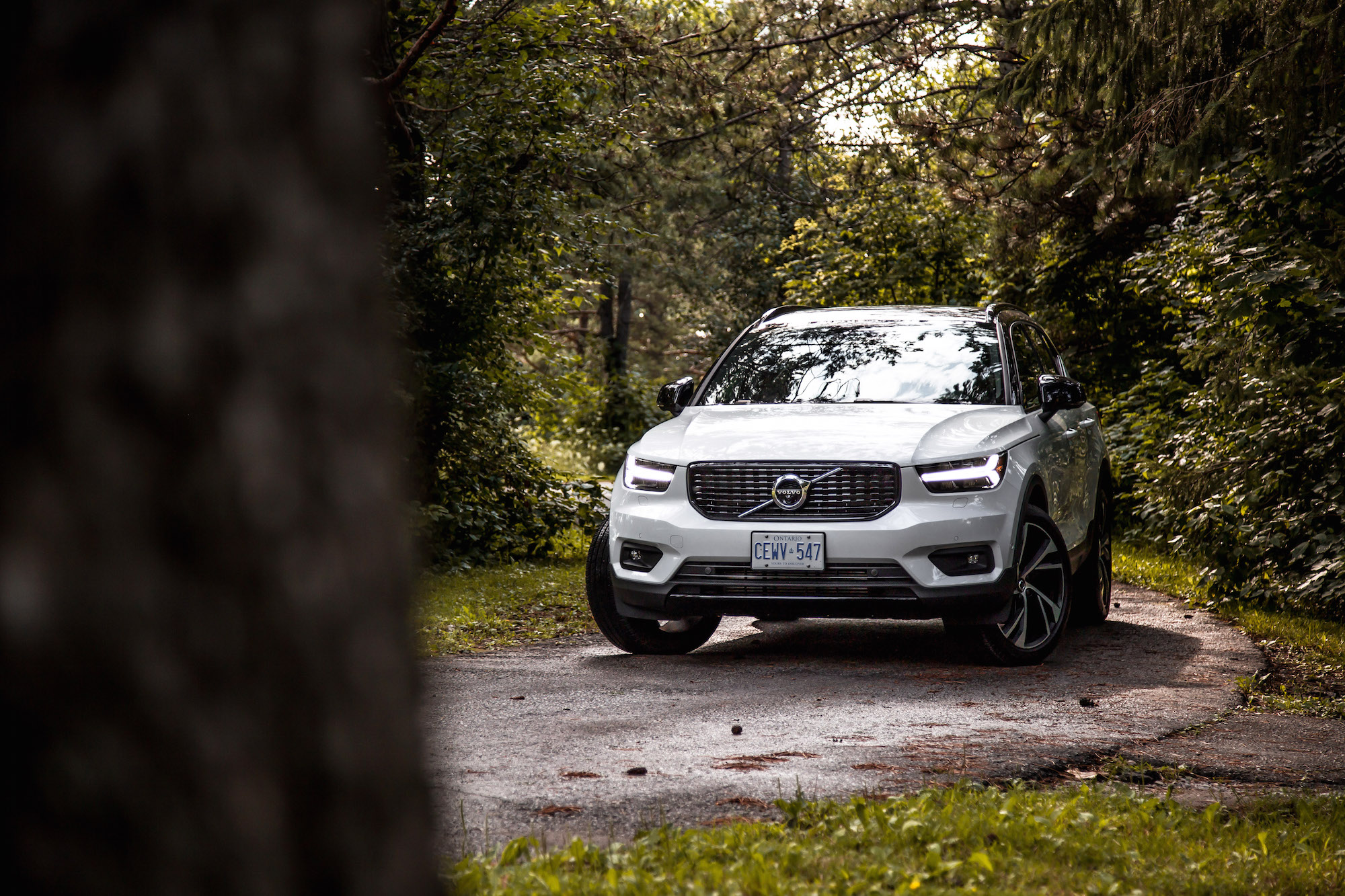 Review 2019 Volvo Xc40 R Design Car